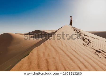 Desert Hill Stock photo © craig