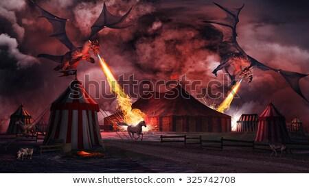 dragon attack   night scene stock photo © spectral