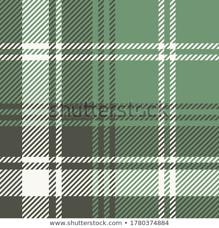 Green plaid Stock photo © disorderly
