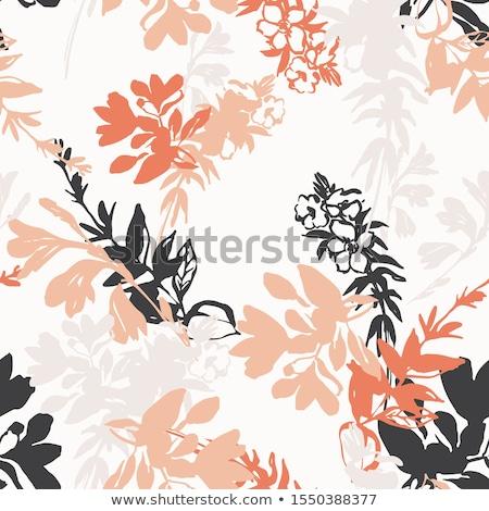 floral · folhas · outono · folha · cair - foto stock © hermione