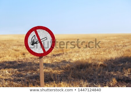 Countryside fire danger signal Stock photo © kawing921