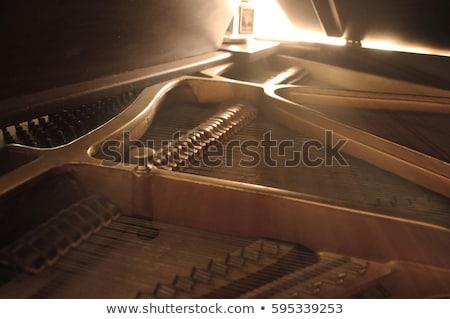 Intérieur piano à queue touches détaillée sonores Photo stock © backyardproductions