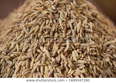 Blurred abstract background - fennel seeds Stock photo © pzaxe