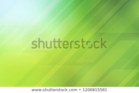 Vert modèle à carreaux diagonal lignes Photo stock © OlgaDrozd