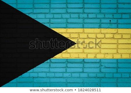 Zászló Bahamák téglafal festett grunge textúra Stock fotó © creisinger