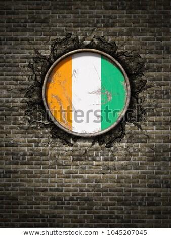 флаг Берег Слоновой Кости кирпичная стена окрашенный Гранж текстуры Сток-фото © creisinger