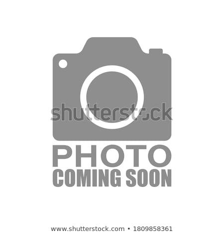 Binnenkort illustratie abstract fotolijstje grijs vector Stockfoto © articular