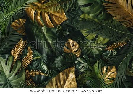 Goud behang rode achtergrond verticaal lijnen textuur Stockfoto © ankarb