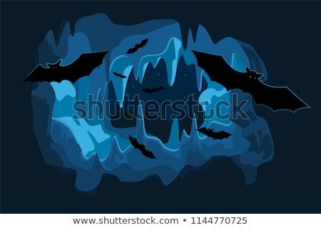 Barlang együtt mély gyümölcs utazás fekete Stock fotó © jkraft5