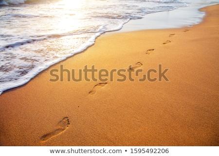 mark of feet at the beach Stock photo © meinzahn
