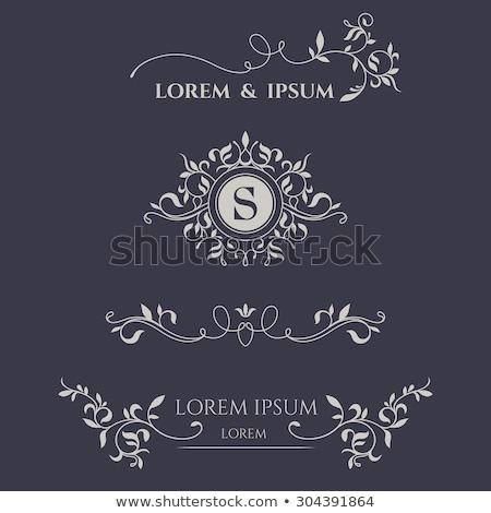 marié · mariée · invitation · de · mariage · amour · vecteur · mariage - photo stock © derocz