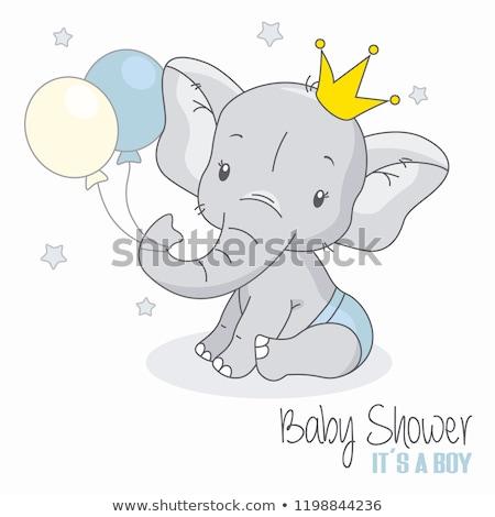 Słoń urodzenia Zdjęcia stock © MichalEyal