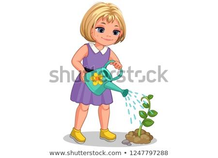 little green plant Stock photo © tiero