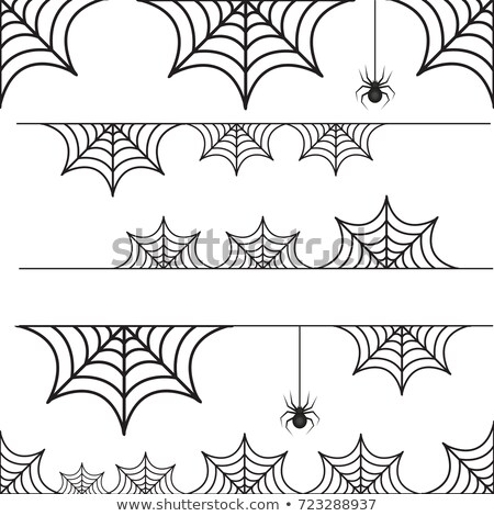 set of decorative elements for halloween spiders spider webs stock photo © elenapro