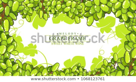 Photo of some grapes with leaves isolated on white Stock photo © dla4