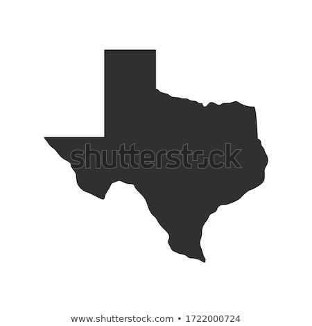 Pokaż Texas ikona serca banderą cel Zdjęcia stock © retrostar