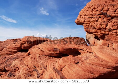 Rood · rock · canyon · Las · Vegas · behoud · Nevada - stockfoto © rigucci