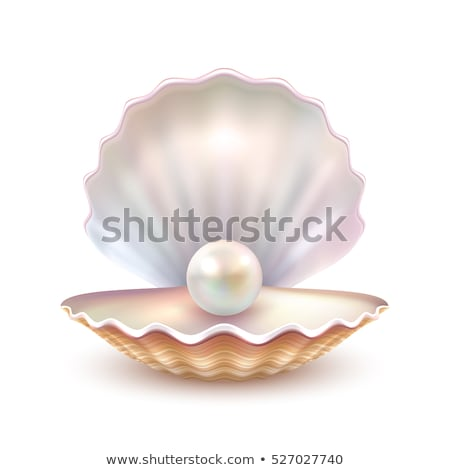 Pearl in sea shell stock photo © ShawnHempel