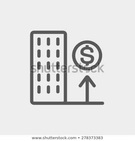 növekedés · jövedelem · vékony · vonal · vektor · ikon - stock fotó © rastudio