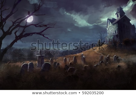 halloween night at the grave yard stock photo © dagokil