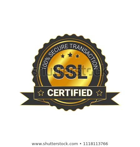 ssl protected golden vector icon button stock photo © rizwanali3d