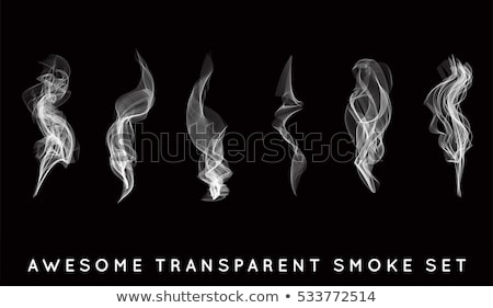 set of transparent white smoke stock photo © samoilik