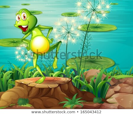 A frog above the stump Stock photo © bluering
