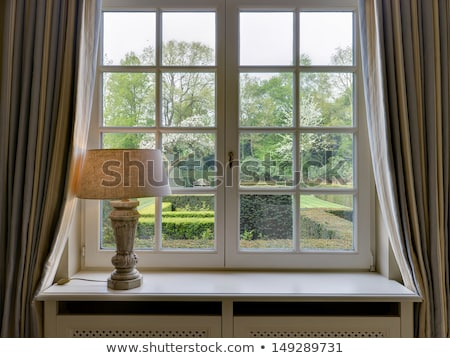 A window with a view of the backyard Stock photo © bluering