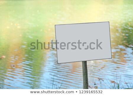 воды · декоративный · цветок · аннотация - Сток-фото © bluering