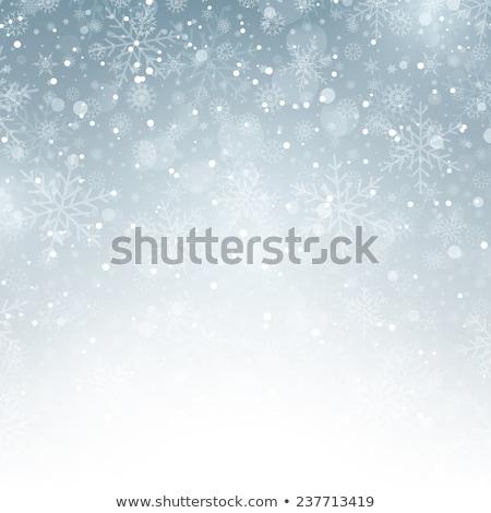 Christmas Snowflakes. EPS 10 Stock photo © beholdereye