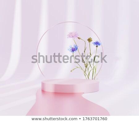 バナー 白い花 青 銀 フレーム 花 ストックフォト © blackmoon979