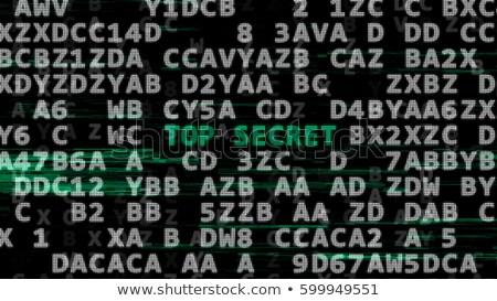 Ouderwets computer woord codering illustratie muis Stockfoto © bluering