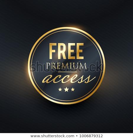 Prémium hozzáférés kitűző arany címke terv Stock fotó © SArts