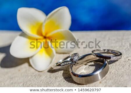 Menyasszony vőlegény perem úszómedence esküvő férfi Stock fotó © IS2