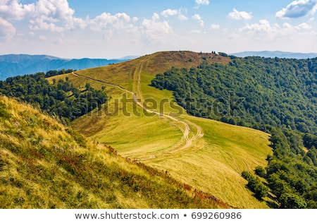Autumn landscape with a beautiful forest on the slopes Stock photo © Kotenko