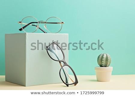 Closeup Front of Lens with Professional Vision. Stock photo © tashatuvango