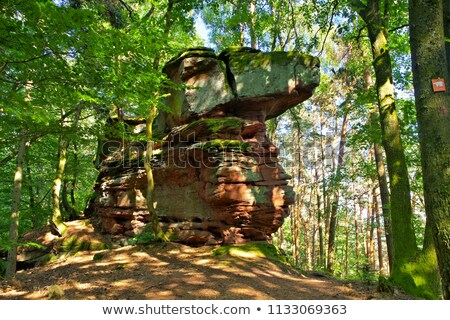 Juengstberg mountain in Dahn Rockland Stock photo © LianeM