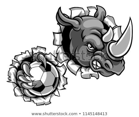Rhino Holding Soccer Ball Breaking Background Stock photo © Krisdog