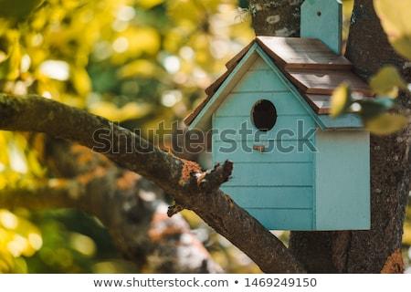 Birdhouse in the park Stock photo © Kotenko