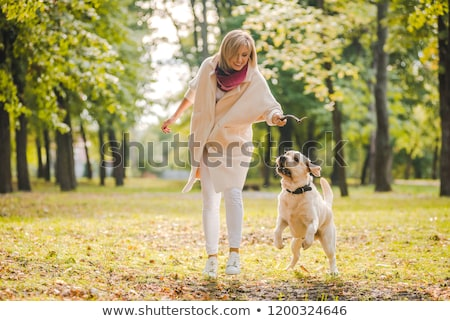 Woman throwing the stick playing with her dog Stock photo © Kzenon