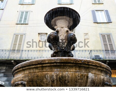 Fontana Del Gombito in Bergamo Stock photo © boggy