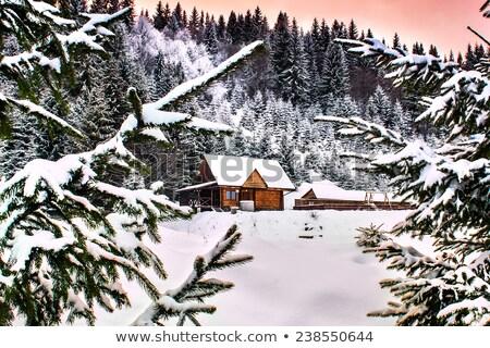 Stok fotoğraf: Mor · kış · köy · manzara · ev · Noel