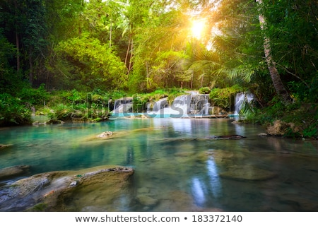 relaxing in the sunshine by a tranquil waterfall stock photo © lovleah