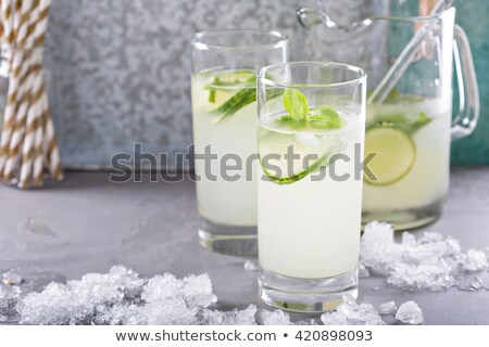 Basil lemon detox water pitcher Stock photo © maxsol7