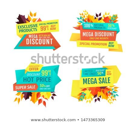 ingesteld · verkoop · najaar · vallen · prijs - stockfoto © robuart