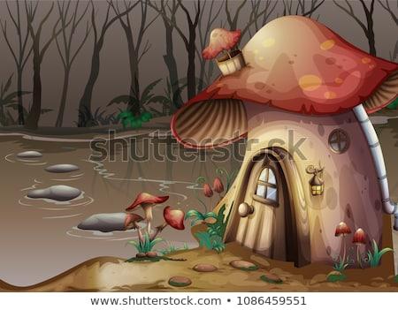 Champignon huis moeras illustratie hout bos Stockfoto © colematt
