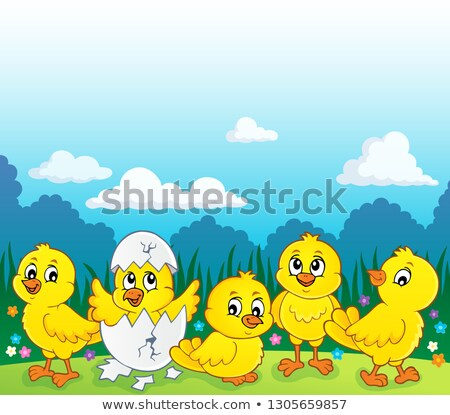 cute chickens topic image 3 stock photo © clairev