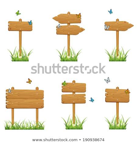 насекомое иллюстрация древесины кадр искусства Сток-фото © colematt