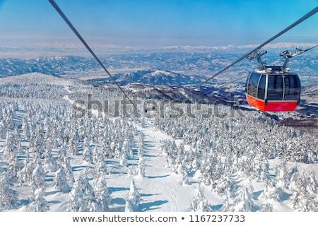Stockfoto: Sneeuw · pad · winter · bos · Japan · natuur