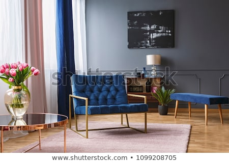 Room Interior Wide Window with Curtains and Plant Stock photo © robuart
